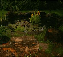 Pond Art by Deborah Dillehay
