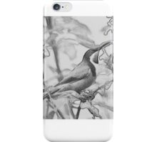 Charcoal Spinebill iPhone Case/Skin