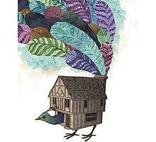 the birdhouse revisited  Photographic Print