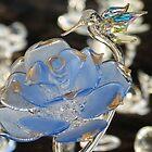 blue rose - rosa azul by Bernhard Matejka