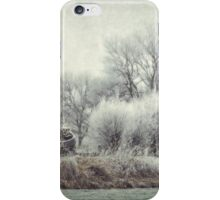 Frozen World iPhone Case/Skin