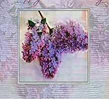 lilac brithday card by cynthiab