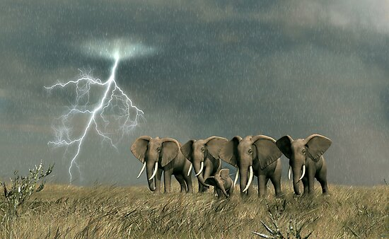 Monsoon on the Serengeti Plain by Walter Colvin
