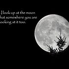 When I look up at the moon... by Tracy Riddell