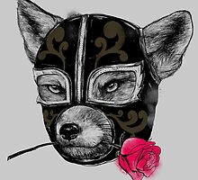 The Mask of el Zorro luchador by Madkobra