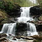 Ricketts Glen Tuscarora Falls by James Wheeler