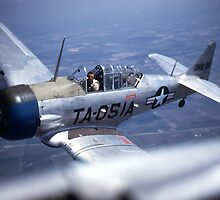 T-6 Texan by Bryan Peterson