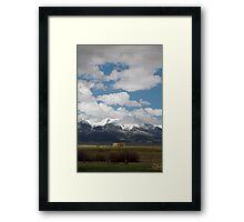 The Last Fall Framed Print