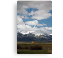 The Last Fall Canvas Print