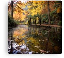 Autumnal Scene II Canvas Print