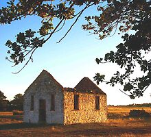 St Mary's Church at Sunset, Outside Goulburn, NSW, Australia by Peter Clements