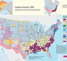 Top US Ancestries by county Map by JoAnnFineArt