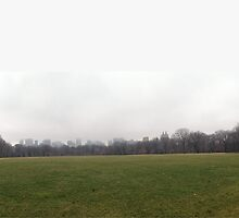 Foggy NYC Skyline Panorama by MissCellaneous