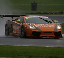 Racing in the rain by zoompix