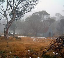 Snowy Mountain High - Dinner Plain Great Alpine Road Victoria by Philip Johnson