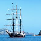 The Spirit of New Zealand in the Bay of Islands.......! by Roy  Massicks