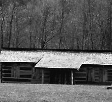 civil war building , pricketts fort by melynda blosser