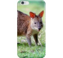 Young Paddy... iPhone Case/Skin