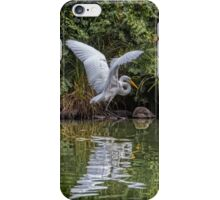 Egret Hunting for Lunch iPhone Case/Skin