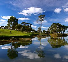 The pond at Deakin University, Waurn Ponds Campus by Akif  Kaynak