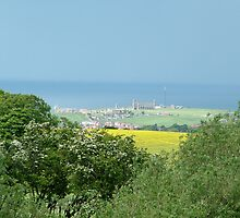 whitby abbey, from inland by dougie1
