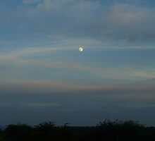 Moon Over My Valley by Kat Miller