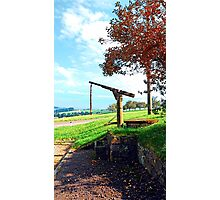 Old fountain under the plum tree | landscape photography Photographic Print