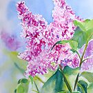 The Sweet Scent of Spring by Ruth S Harris