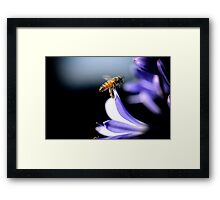Pollen On Our Feet Framed Print