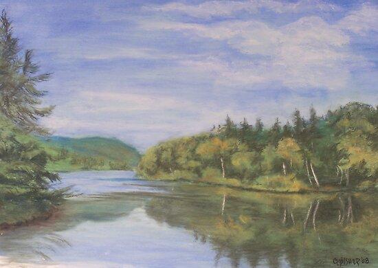 Nova Scotia Reflections 2 by Carolyn Bishop