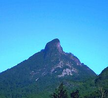 Mt. Warning by Jennifer Ellison