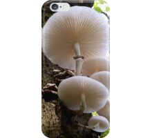 Porcelain Fungus iPhone Case/Skin