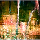 Reflections In A Pond #12 by Mark Ross