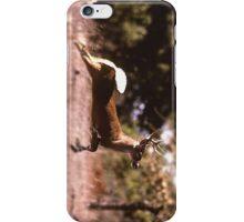 White-Tail Deer Running iPhone Case/Skin