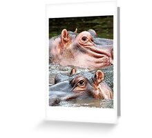ANIMAL KINGDOM - HIPOPOTAMUS- AMPHIBIUS   Greeting Card