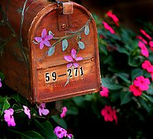 flowers by post by steen