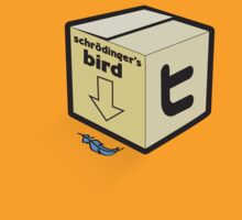 Schrödinger's Bird by lachiec