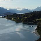 From Bennets Bluff to Glenorchy  by Robin Smith