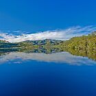 Gordon River - Pristine Paradise by Neil