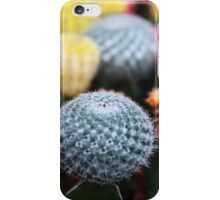 Cactus and Flowers - Pink Green Blue Yellow  iPhone Case/Skin