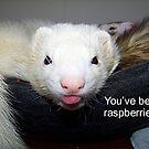 You've been raspberried... by Glenna Walker