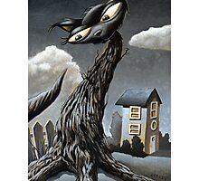 Cat Tree Photographic Print
