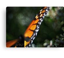 Butterfly Bokeh Canvas Print