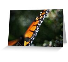 Butterfly Bokeh Greeting Card