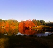 """""""Reflection at #6"""" by Clayton  Turner"""
