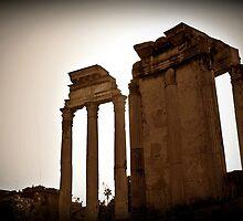 Temples of Vesta & Castor & Pollux, Rome, Italy by buttonpresser