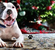 Bubba's First Christmas by Shelley Neff