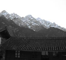 tiger leaping gorge by sullivan