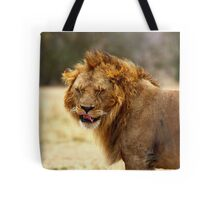 Mmmmm...Nice ! The Male Lion After Copulation, Maasai Mara, Kenya Tote Bag
