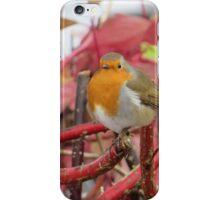Ireland - Blarney Robin iPhone Case/Skin